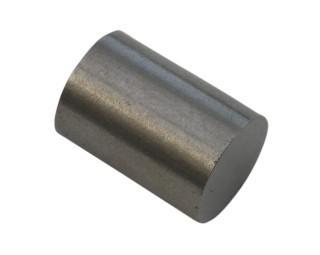 Boiler Float Magnet